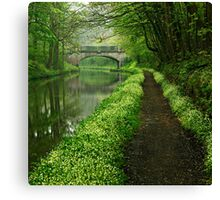 Union Canal - The Way To You (Colour Version) Canvas Print
