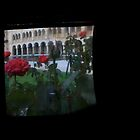 TTV Image ( Through The Viewfinder)# 7 UWA Cards by delta58