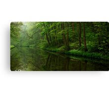 Union Canal - A Tree Lined Way (Colour Version) Canvas Print