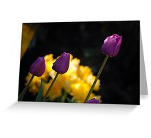 Tulips - Purple Greeting Card