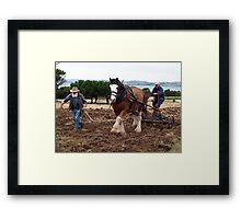 Hard Going at Churchill Island - Easter 2011 Framed Print
