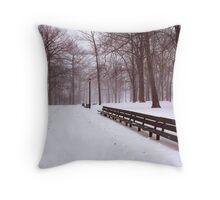 Snowy Park Benches  Throw Pillow