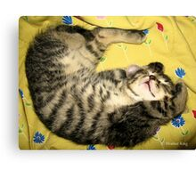 Sleepytime Canvas Print