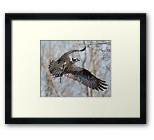 Nesting Materials Framed Print