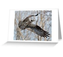 Nesting Materials Greeting Card