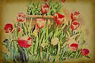 Vintage Tulips by Elaine Teague