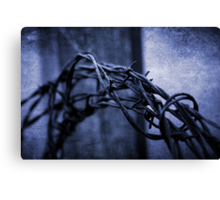 Tangled Up In Blue Canvas Print