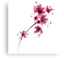 Sakura flower Canvas Print