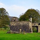 Out Building at fore abbey. by Finbarr Reilly