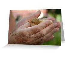 Beauty...  Greeting Card