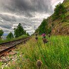 The Circum-Baikal Railroad, Siberia, Russia by Dmitry Shytsko