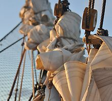 Sails in Waiting by Pete West