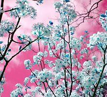 Bubblegum Skies by Kathy Bucari