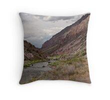 New Mexico #14 Throw Pillow