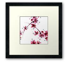 Sakura flower Framed Print