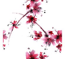 Sakura flower Photographic Print