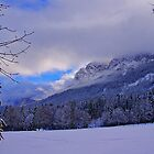 Grainau (Garmisch) Germany by Daidalos