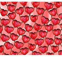 Radish Hearts Duvet Photographic Print