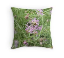 Pollinating Bumble Bee- Hammonnassett State Park CT  Throw Pillow