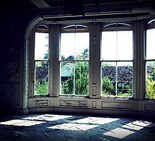 Lux ~ Lillesden School by Josephine Pugh