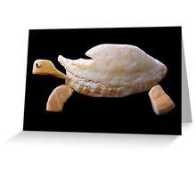 The Tortoise Greeting Card