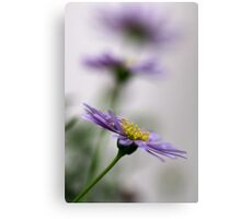 Just a flower *2*.... (I don't know anything about them, but I like them) Canvas Print