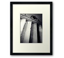 Scurry into the Darkness ~ Lillesden School Framed Print