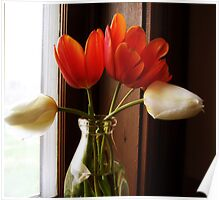 Tulips on the Windowsill Poster