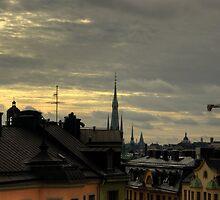 Stockholm Rooftops by Dmitry Shytsko