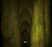 Arches by Nikki Smith