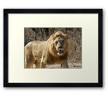 Stop Salivating! I Am Not Your Next Meal Framed Print