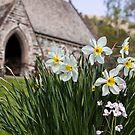 Spring In The Church Yard by Lynne Morris