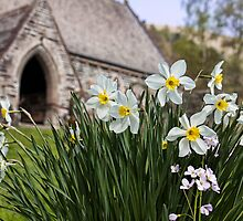 Spring In The Church Yard by Lynne Morris