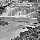 Russell's Falls by Sandra Guzman