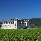 Vougeot by arteparada
