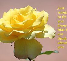 Yellow Rose by DebbieCHayes