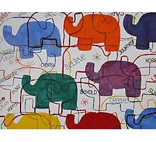 Elephant Karma Photographic Print