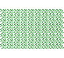 Jiu-Jitsu Green  Photographic Print