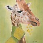 George - Giraffe in a Scarf by Karen  Hull