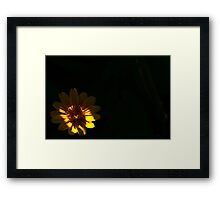 In The Undergrowth Framed Print