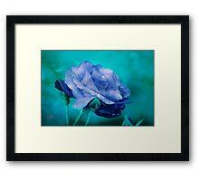 Rose of Blue Framed Print