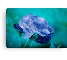 Rose of Blue Canvas Print