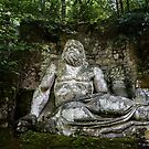 Neptune, Bosco Sacre di Bomarzo, Lazio, Italy by Andrew Jones