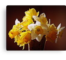 A Bouquet Of Daffodils Canvas Print