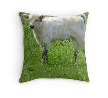 Bluegrass Calf Throw Pillow