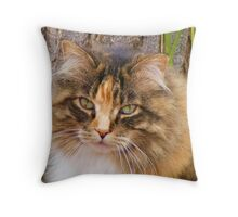 With a name like Smuckers... Throw Pillow