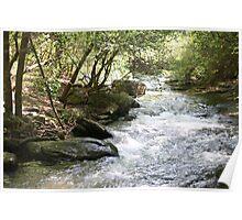 Georgia Water Poster