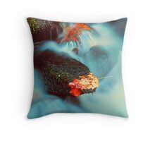 AUTUMN LEAVES AND MOSSY ROCKS Throw Pillow