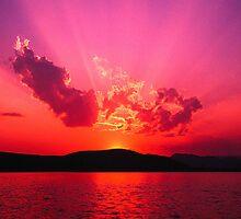 Sunshine Coast Sunset by Lisa  Morris