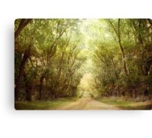 ~ In Autumn Light ~ Canvas Print